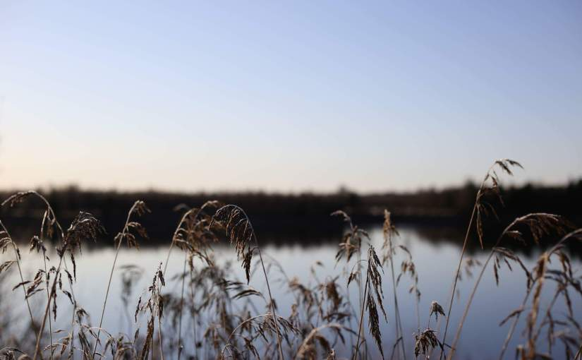 Fyysistä hyvinvointia mielen kannustamana ja henkistä hyvinvointialiikkeellä?