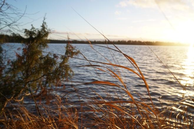 järvi7.JPG